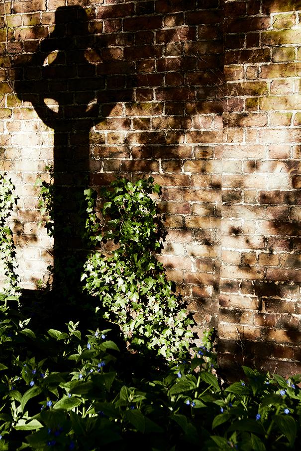 buried-shadows-14